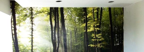 streichen tapezieren und renovieren vom fachmann aus hamburg. Black Bedroom Furniture Sets. Home Design Ideas